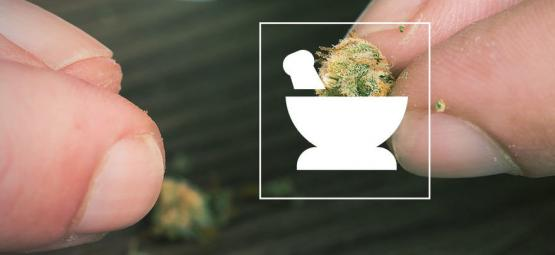 10 Ways To Grind Cannabis Without A Grinder [2021 Update]