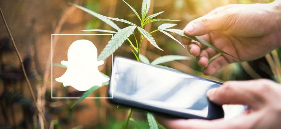 9 Cannabis Accounts To Follow On Snapchat