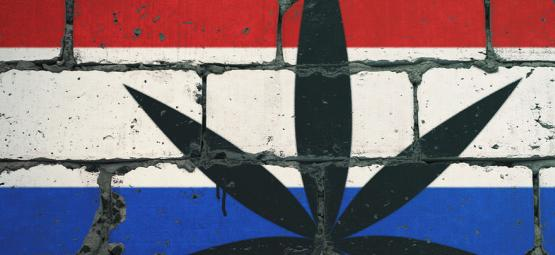 Here Are The Top 10 Smoke Spots In The Netherlands