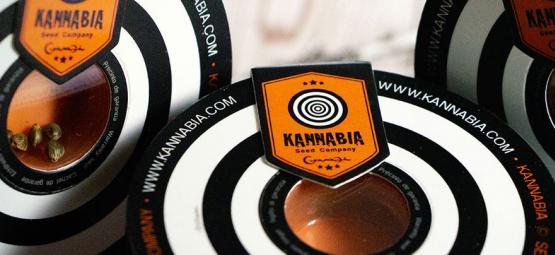 Top 10 Cannabis Strains By Kannabia Seeds