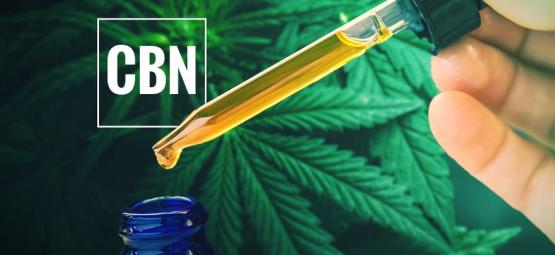 What Is CBN Oil?