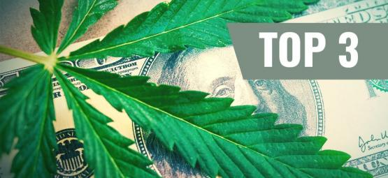 Most Expensive Cannabis Strains (+ Affordable Alternatives)