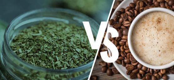 Yerba Maté Vs. Coffee: Should You Make The Switch?